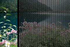 perforated-mesh-security-windows-1